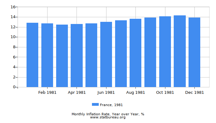 1981 France Inflation Rate: Year over Year