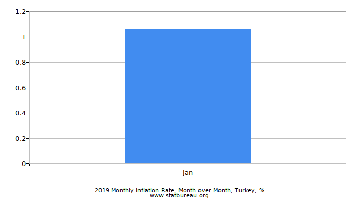2019 Monthly Inflation Rate, Month over Month, Turkey